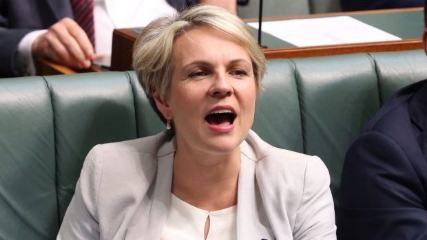 Tanya Plibersek says Labor should change its platform on same-sex marriage at its national conference in July.