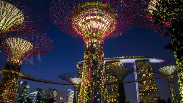 The SuperTree by IndoChine, one of Singapore's great attractions, in addition to its low tax rates.