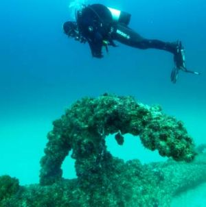 A QPWS Marine Parks Ranger inspects the wreck of the  Aarhus.