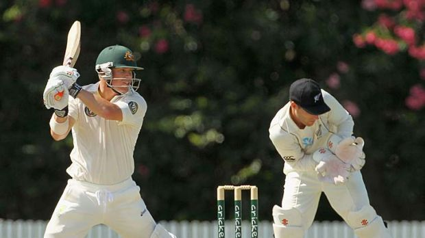 Opportunity: David Warner (left) is set to seize his chance.