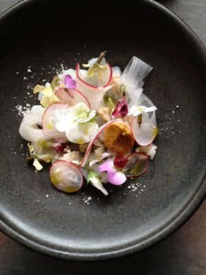 Radish, raw calamari and king crab at Garagistes.