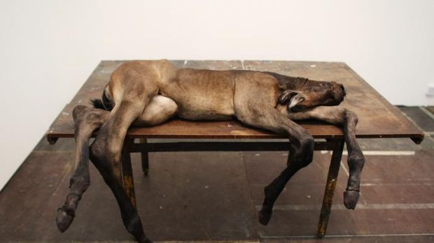 <i>Lost II</i> by Berlinde De Bruyckere, whose upcoming show at ACCA is among Robert Nelson's picks for 2012.