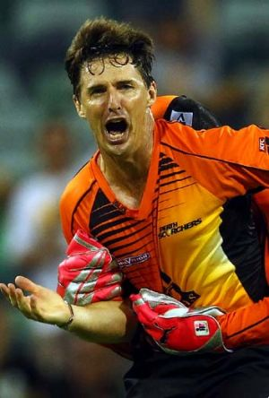 Brad Hogg has been chosen to play for Australia in this year's T20.