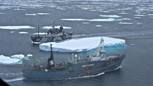 The Sea Shepherd ship Steve Irwin and the whaling ship Yushin Maru No.2 in a cat-and-mouse chase through Antarctic pack ice.