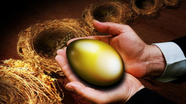Eggs in different baskets … use annuities in tandem with growth assets. <i>Illustration Karl Hilzinger</i>