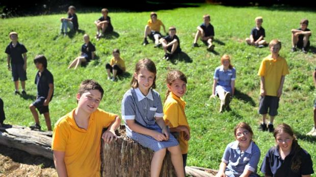 Sassafras Primary has performed extremely well in both reading and numeracy in NAPLAN for years 3 and 5, with only 57 ...