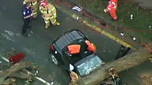 A fallen tree lays across the woman's crushed car.