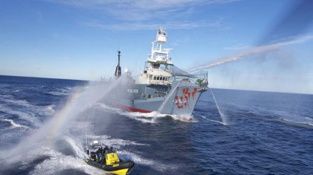 The Japanese harpoon ship Yushin Maru No.3, its bow splashed with red paint by Sea Shepherd activists, fends them off ...