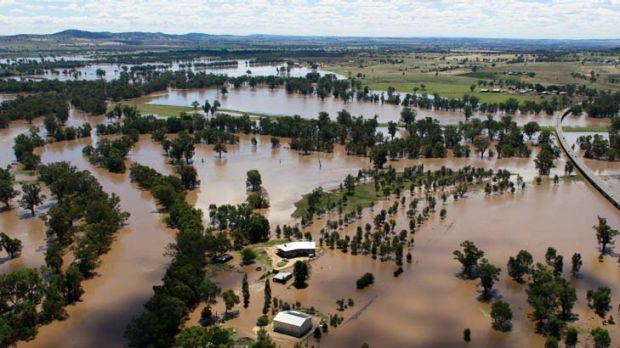 Waste deep … floodwaters swirl around Wagga Wagga, where farmers are using tinnies to rescue stranded sheep.