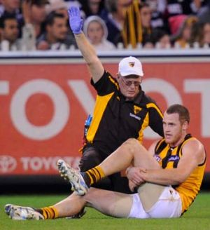 Hawthorn's Jarryd Roughead tore his achilles in round 12 last year.