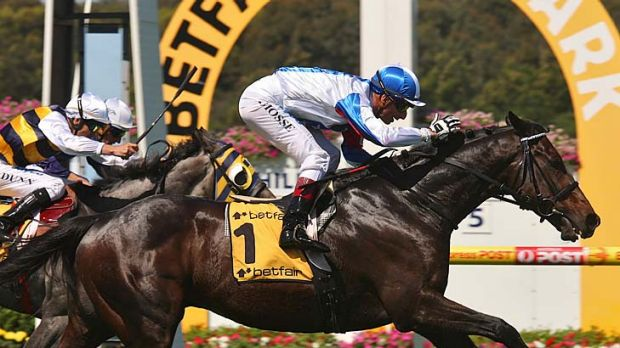 Trainer David Hayes says Americain came through the Australian Cup without a concern.