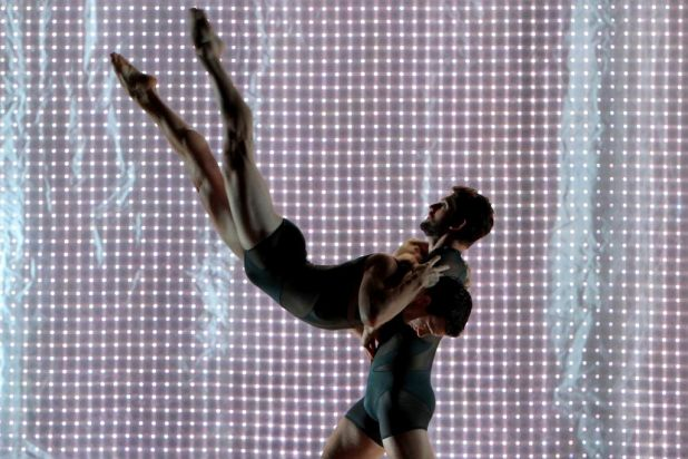 Sydney Dance Company: Dancers Wayne Parsons & Todd Sutherland.