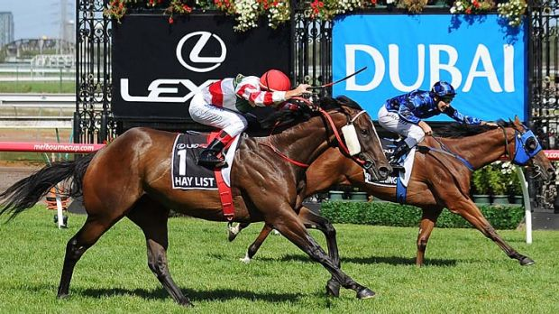 On the up: Hay List (left) lunges for the line to win the Newmarket Handicap over Buffering.