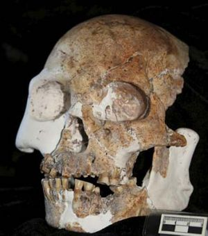 """Not quite """"us"""" ... a skull found in Longlin Cave, Guangxi Zhuang."""