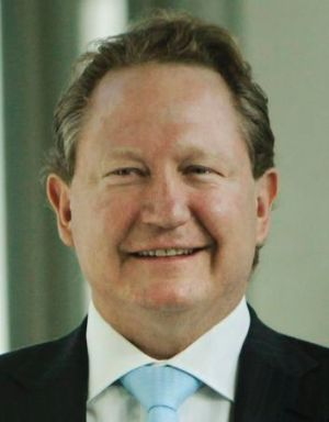 Andrew Forrest's company is taking advice about a challenge.