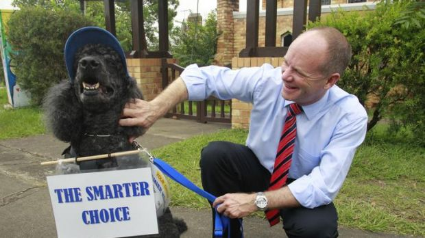 LNP leader Campbell Newman campaigns to win Ashgrove.