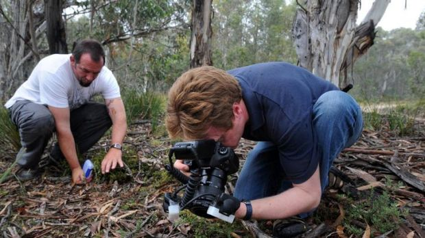 Naturalist Stuart Harris, left, and scientist Dr Jurgen Otto  have discovered and photographed a new spider species at ...