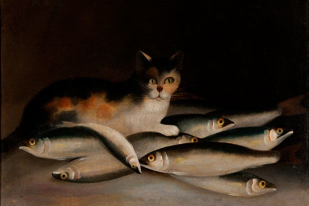 Cat and Fish, 1849. Artist: William Buelow Gould. Oil. Kerry Stokes Collection, Perth formerly Orica Collection.