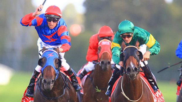 Golden moment: Nash Rawiller gives a flourish of the whip as Pierro beats Snitzerland in the Golden Slipper Stakes at ...