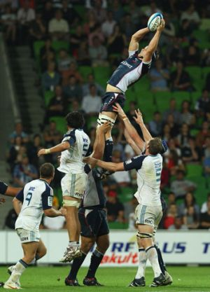 Aiming high... Melbourne Rebels want to recruit a foreign player, despite the ARU's insistence they look locally.