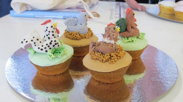 Decorated cupcakes ... Hannah Jenkins, 11, won in the under 17s category. These were inspired by her favourite animal, ...