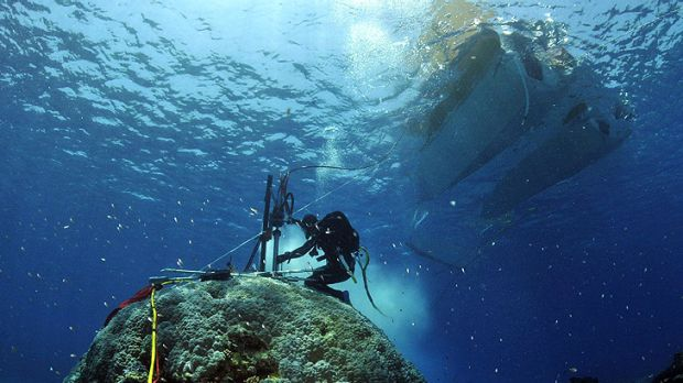 A researcher coring coral at the Rowley Shoals, west of Broome.