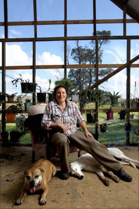 Lucy Culliton with her dogs HepC , Bonny and Earl in her studio on her property, Bibbenluke Lodge.