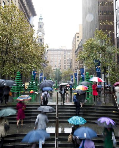 Sydneysiders walk through a LEGO forest in Martin Place on a wet morning.  Photographed by Dominic Loneragan.