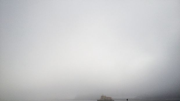 Fog blankets the city skyline in this photo taken from Pyrmont.