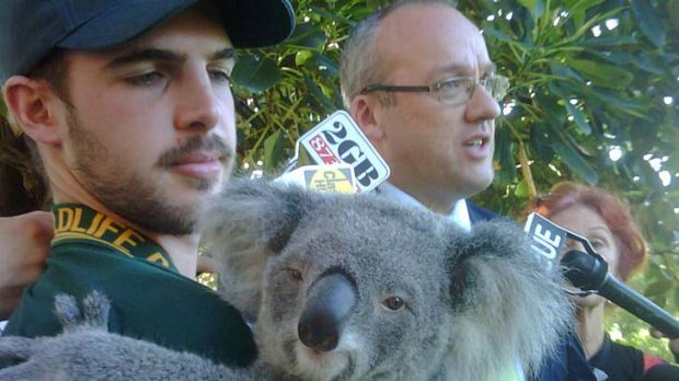 Labor's environment spokesman Luke Foley with Macey from the Featherdale Wildlife Park at NSW Parliament this morning.