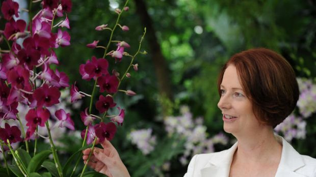 """Australian Prime Minister Julia Gillard looks at the Orchids named after her, """"Dendrobium Julia Gillard"""", during their ..."""
