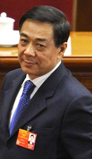Dumped by party ... her husband Bo Xilai.