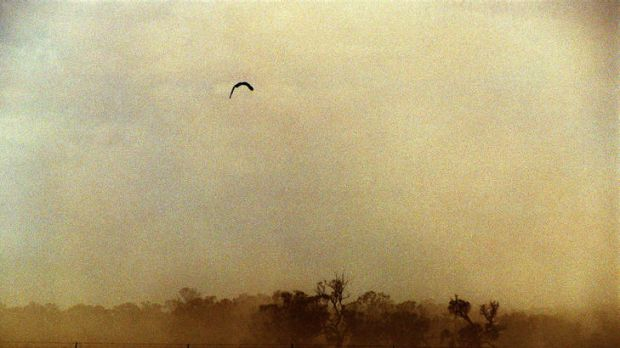 A dust storm passes over western NSW ... the Productivity Commission says land-tax exemptions could encourage farmers to ...