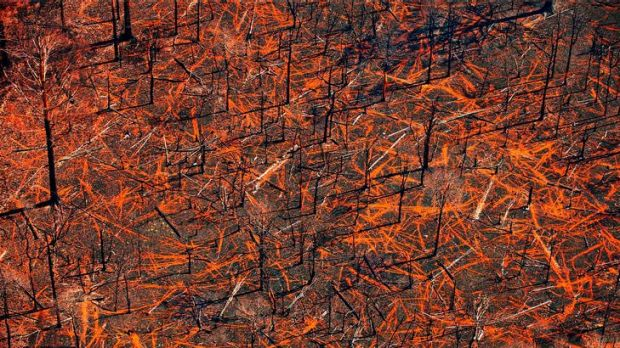 Archival pigment ink on photo rag from John Gollings' <i>Bushfire Aerials</i> exhibition.