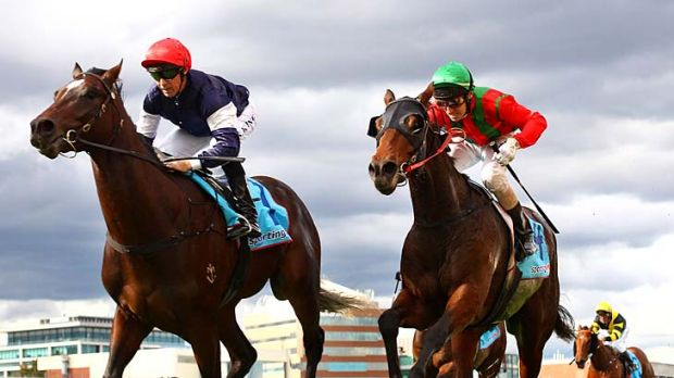 Steven King guides Wales to victory in the National Jockeys' Trust Redoute's Choice Stakes.
