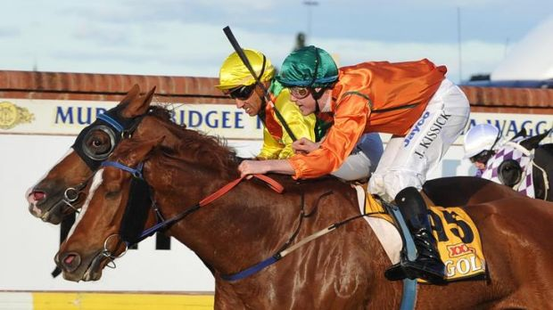 Jeff Penza on Coliseo, inside, wins the Wagga Gold Cup on Friday,