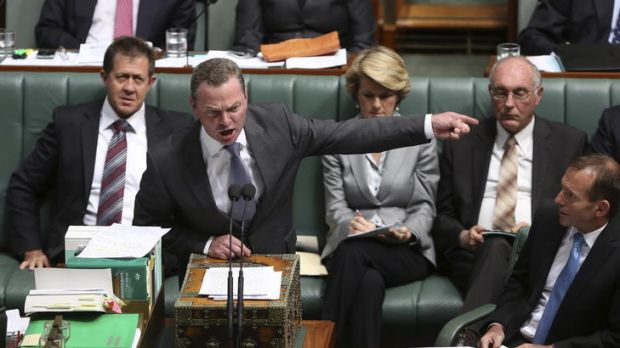 Christopher Pyne during Question Time in Federal Parliament last week.