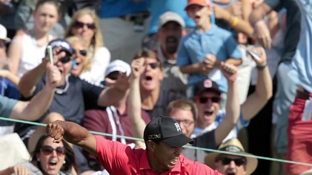 Incredible shot ... Tiger Woods  reacts after chipping in for a birdie on the 16th hole.