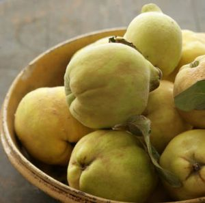 Quinces are one of Matt Preston's winter treats.