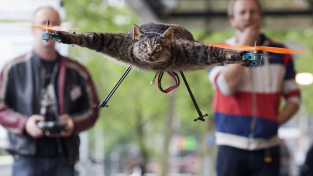 Jansen said the Orvillecopter is part of a visual art project which pays tribute to his cat Orville, by making it fly ...