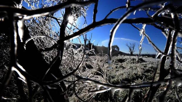 A Canberra Times' photographer's picture of the winter-wonderland created by early morning frost at Mugga Lane tip ...