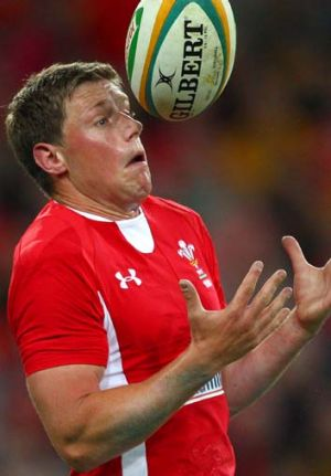 If only … Wales five-eighth Rhys Priestland fumbles.