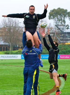 Jake King, training with the Wallabies at Punt Road yesterday, is expected to return after a one-match ban against ...