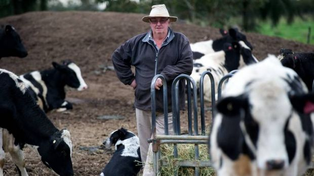 Yarroweyah dairy farmer Jim McKeown says he will look into the feasibility of taking up the federal government's Carbon ...