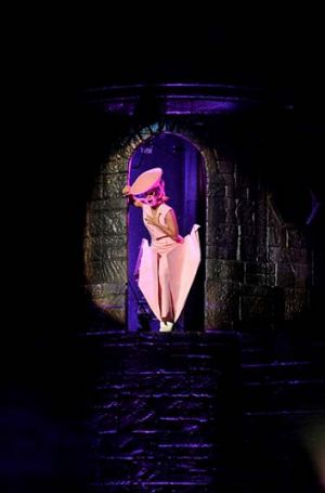 Lady Gaga performs during her Born This Way tour.