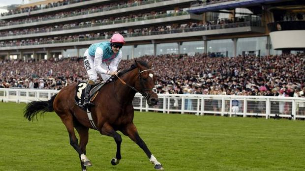 The world's top-rated racehorse, Frankel (ridden by Tom Queally), wins The Queen Anne Stakes at Royal Ascot.