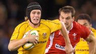 Can the Wallabies perform away from home? (Video Thumbnail)