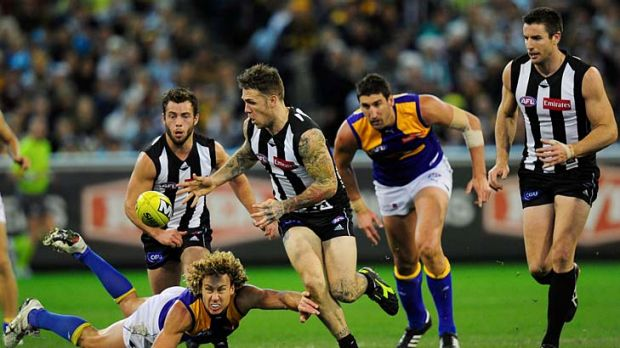 Magpie moments: Dane Swan wins the ball for Collingwood in the match against West Coast at the MCG yesterday.