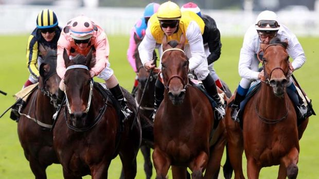 Nail biter ... Black Caviar, left, holds off fast-finishing Moonlight Cloud, right, to win the Diamond Jubilee Stakes at ...