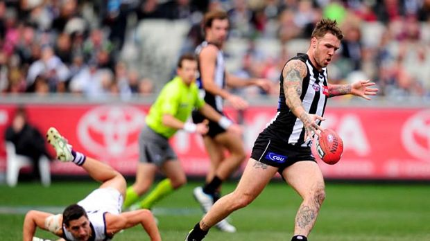 Steady now: Dane Swan leaves Fremantle's Nick Lower tumbling in his wake. Swan's relentless work ensured the Magpies ...